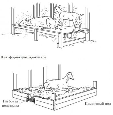 пример обустройства пола для коз