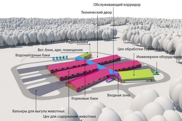 план свинофермы